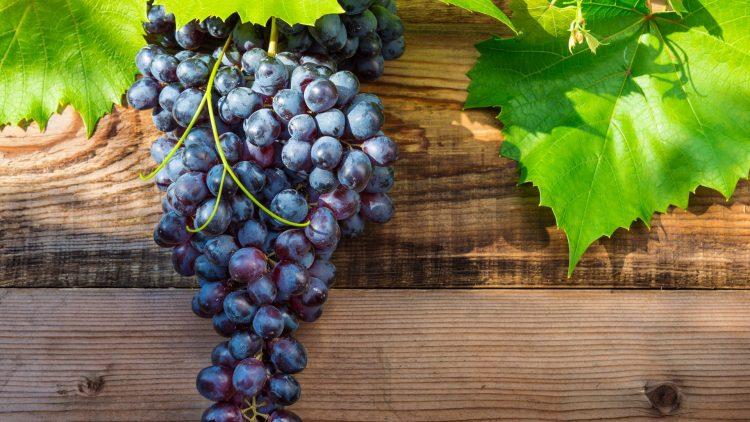 Weintraube mit Blättern auf Holzplatte
